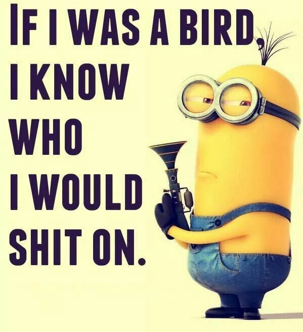 Minions Funny Memes : Collection of popular funny minions memes